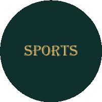 Diffusion d'évènements sportifs sur écran géant